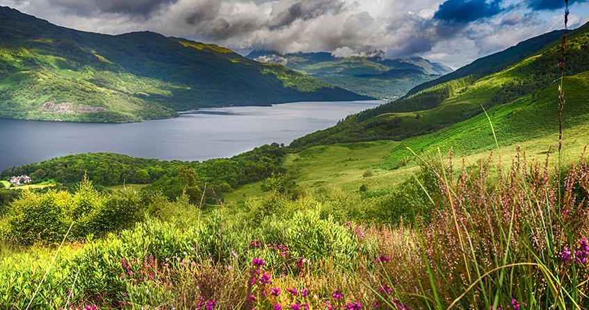 Loch Lomons