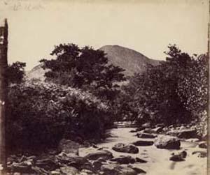Paisaje tomado por John Muir Wood