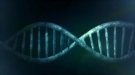 Imagen de la molecula del ADN.