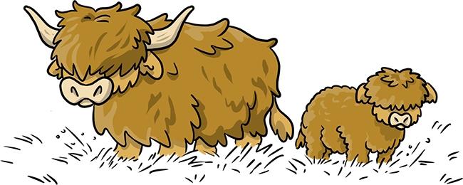 ilustración vacas
